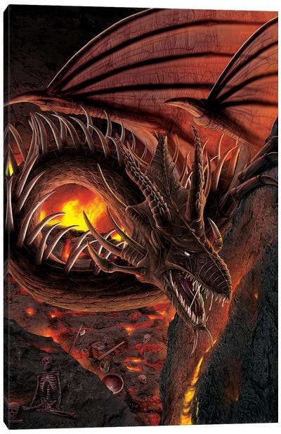 Hellfire Dragon Canvas Art Print