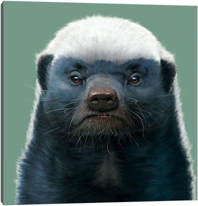 Honey Badger Canvas Art Print