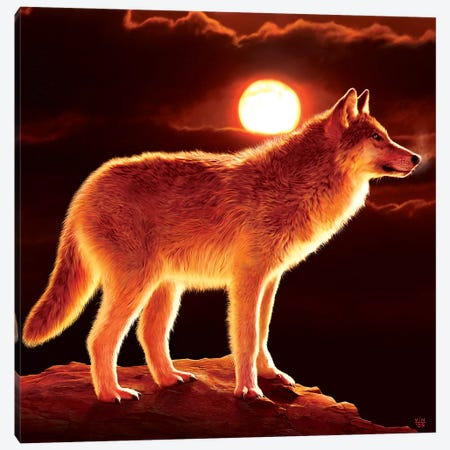 Sunset Wolf Canvas Print #HIE45} by Vincent Hie Canvas Artwork