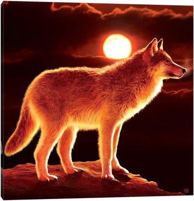 Sunset Wolf Canvas Art Print