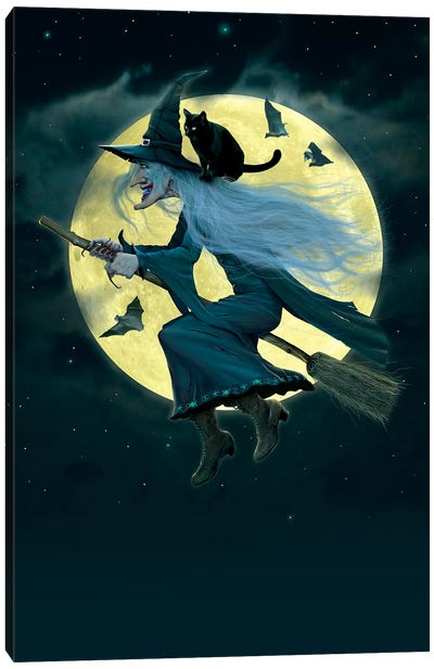 Witch Canvas Art Print
