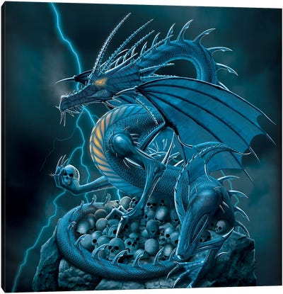 Abolisher Canvas Art Print