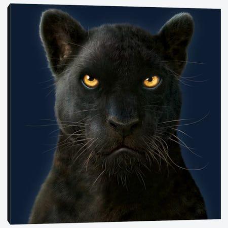 Black Panther Portrait 3-Piece Canvas #HIE65} by Vincent Hie Canvas Art