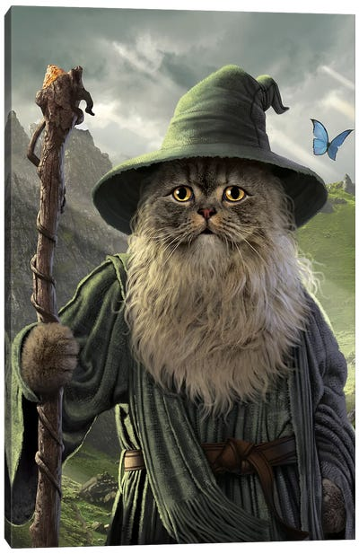Catdalf  Canvas Art Print