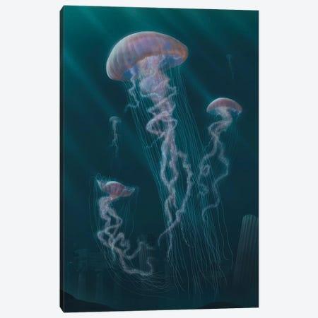 Jellyfish  Canvas Print #HIE77} by Vincent Hie Art Print