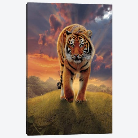 Rising Tiger Canvas Print #HIE83} by Vincent Hie Canvas Art Print