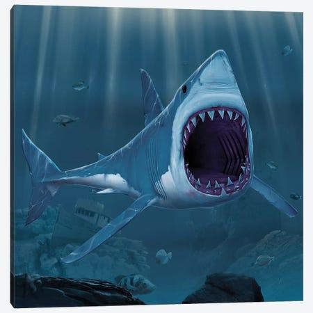 Shark Bite Canvas Print #HIE85} by Vincent Hie Canvas Artwork