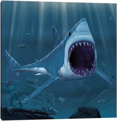 Shark Bite Canvas Art Print