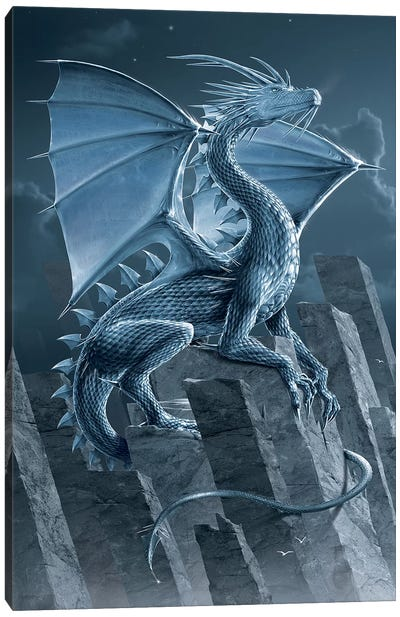 Silver Dragon Canvas Art Print