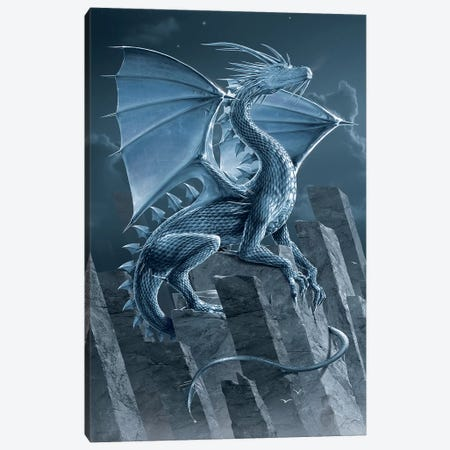 Silver Dragon 3-Piece Canvas #HIE86} by Vincent Hie Canvas Wall Art