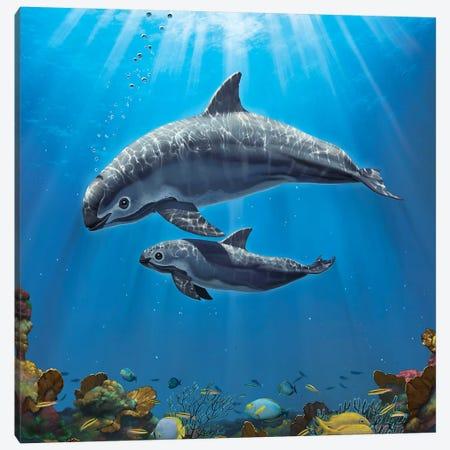 Vaquita Critically Endangered Canvas Print #HIE89} by Vincent Hie Art Print