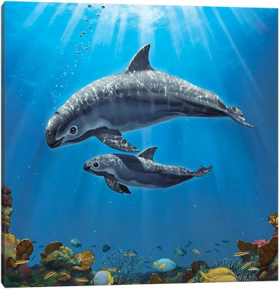Vaquita Critically Endangered Canvas Art Print