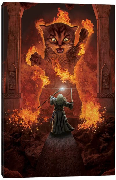 You Shall Not Pass! Canvas Art Print