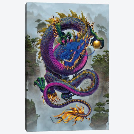 Good Fortune Dragon  Canvas Print #HIE98} by Vincent Hie Canvas Wall Art