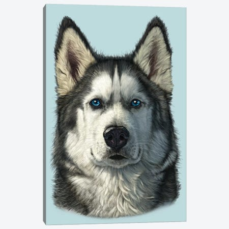 Husky Portrait Canvas Print #HIE99} by Vincent Hie Canvas Artwork