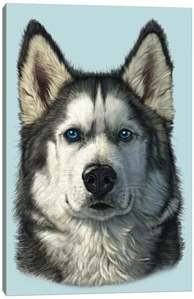 Husky Portrait Canvas Art Print