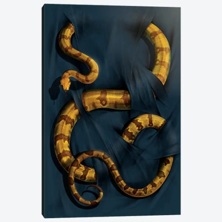 Boa Constrictor Canvas Print #HIE9} by Vincent Hie Canvas Art