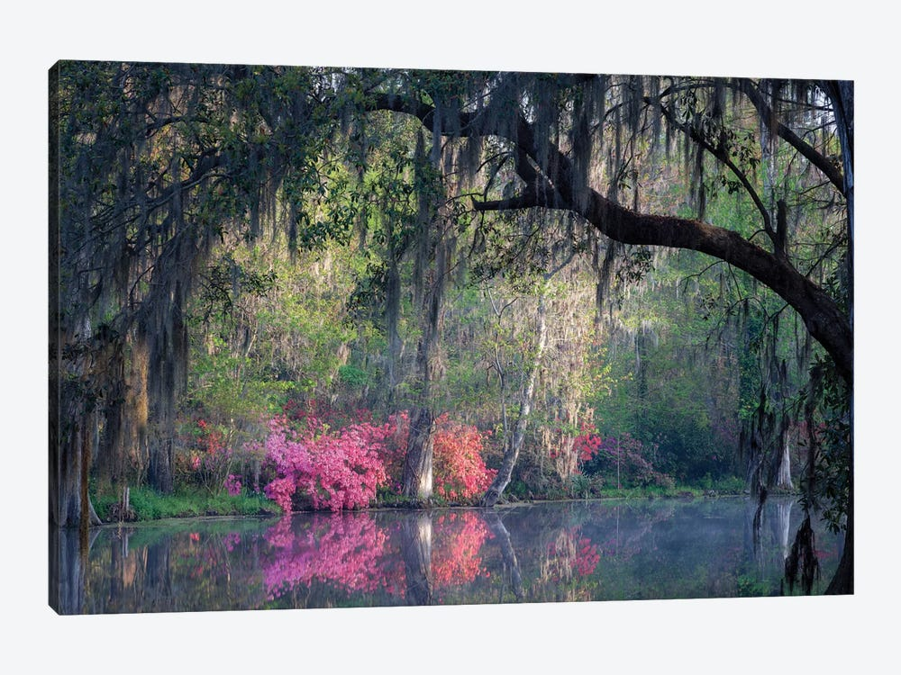 Morning Serenity by H.J. Herrera 1-piece Canvas Wall Art