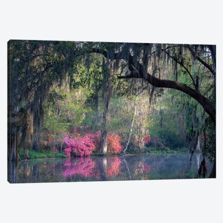 Morning Serenity Canvas Print #HJH2} by H.J. Herrera Canvas Art