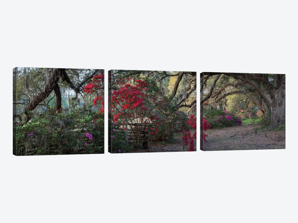 Springtime Morning by H.J. Herrera 3-piece Art Print