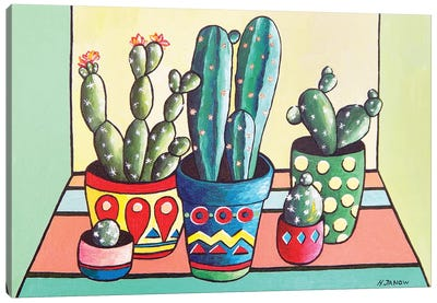 My Cactus Garden Canvas Art Print
