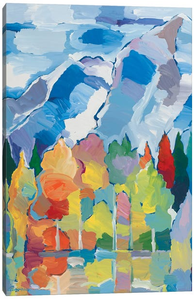 Colorado Composition II Canvas Art Print