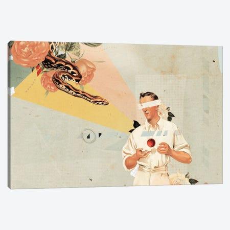 A Canvas Print #HLA1} by Heather Landis Canvas Print