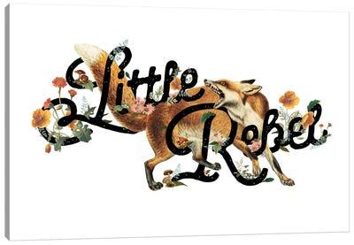 Little Rebel Fox Canvas Art Print