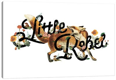 Little Rebel Fox Canvas Art Print