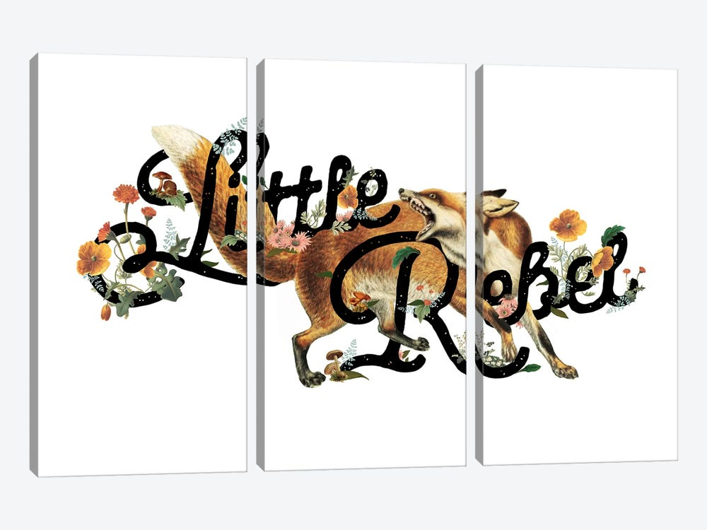 Little Rebel Fox by Heather Landis 3-piece Canvas Wall Art