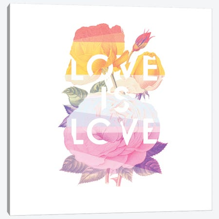 Love Is Love Canvas Print #HLA26} by Heather Landis Canvas Artwork