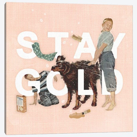 Stay Gold Canvas Print #HLA37} by Heather Landis Canvas Print