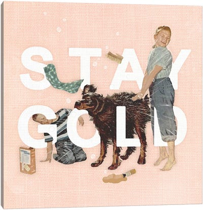 Stay Gold Canvas Art Print