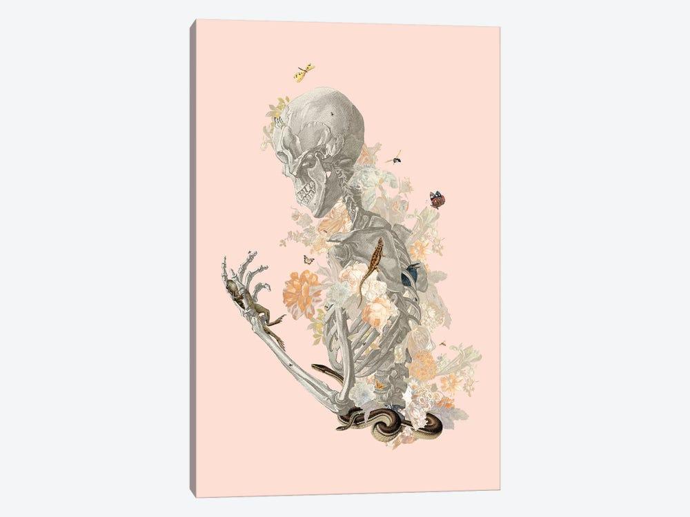 Stranger Danger by Heather Landis 1-piece Canvas Print