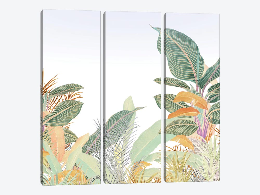 Native Jungle by Heather Landis 3-piece Canvas Wall Art