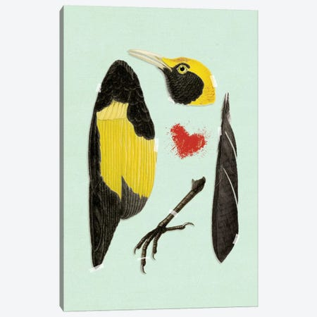 Bird 3-Piece Canvas #HLA4} by Heather Landis Canvas Art