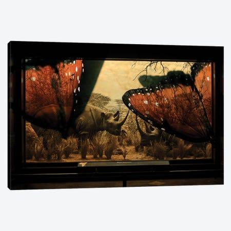 Rhinos Canvas Print #HLA50} by Heather Landis Canvas Wall Art