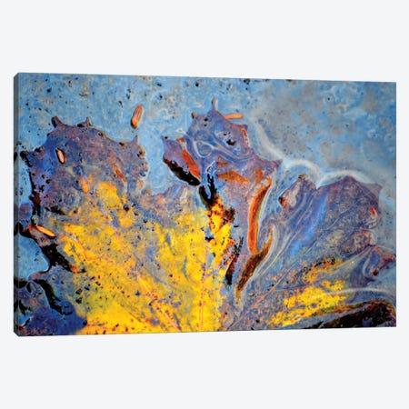Deva Canvas Print #HLC4} by Helena Cooper Canvas Artwork