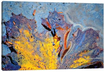 Deva Canvas Art Print