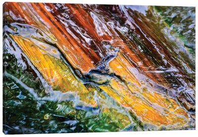 Electrica Canvas Art Print