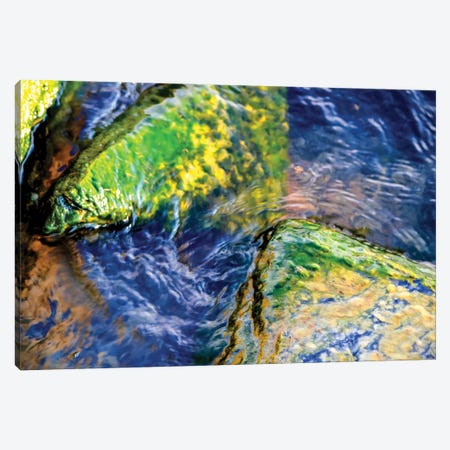 Encounter Canvas Print #HLC7} by Helena Cooper Canvas Art