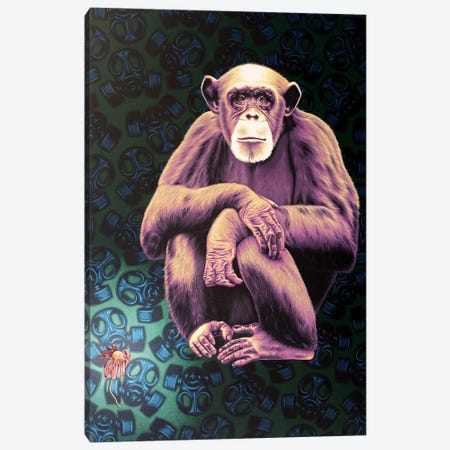 APE (Anyone Protecting the Environment) Canvas Print #HLL3} by Stephen Hall Canvas Artwork