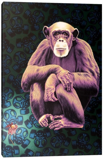 APE (Anyone Protecting the Environment) Canvas Art Print