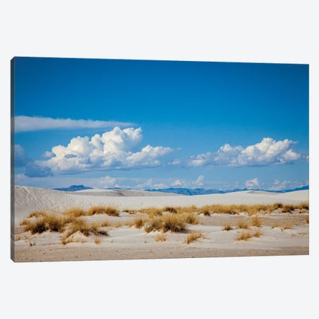 New Mexico. White Sands National Monument landscape of sand dunes and mountains II Canvas Print #HLO13} by Hollice Looney Canvas Art