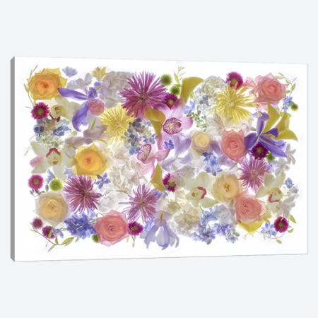 USA, Florida. Floral bounty II Canvas Print #HLO17} by Hollice Looney Canvas Print