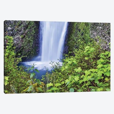 USA, Oregon, Columbia River Gorge, Multnomah Falls Canvas Print #HLO35} by Hollice Looney Art Print
