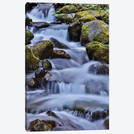 USA, Oregon, Columbia River Gorge, Water Cascading over Rocks at Punchbowl Falls Canvas Print #HLO36} by Hollice Looney Art Print