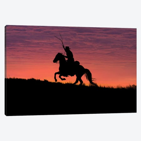 USA, Wyoming, Shell, The Hideout Ranch, Silhouette of Cowboy and Horse at Sunset  Canvas Print #HLO42} by Hollice Looney Canvas Print