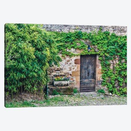 France, Cordes-sur-Ciel. Wooden doorway in vine covered stone wall. Canvas Print #HLO51} by Hollice Looney Canvas Wall Art