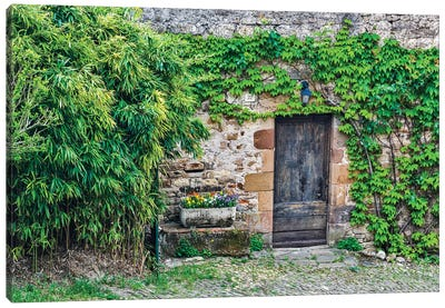 France, Cordes-sur-Ciel. Wooden doorway in vine covered stone wall. Canvas Art Print